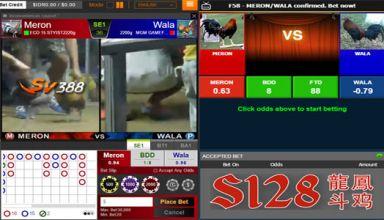 Uraian Nilai Odds Dalam Permainan Sabung Ayam Online
